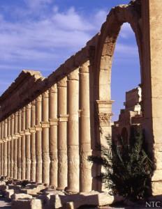 Palmyre, Syrie